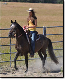 Riding in arena is the Paso Fino Gelding, Cauchera.