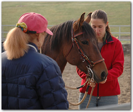 Sarah teaching student about Paso Fino head gear.